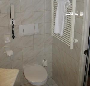 Im Bad - Toilette und Handtuchheizkörper