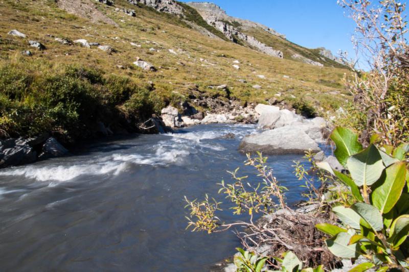 Da fließt er dahin - der Savage River
