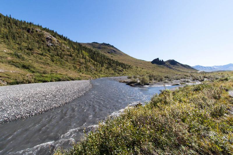 Der River mit Kiesbank im Gegenlicht - einfach nur schön!