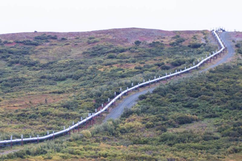 Schön ist sie nicht, die Trans Alaska Pipeline