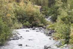 Ein namenloser Creek am Wegesrand