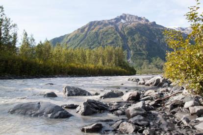 Im Kenai Fjords National Park