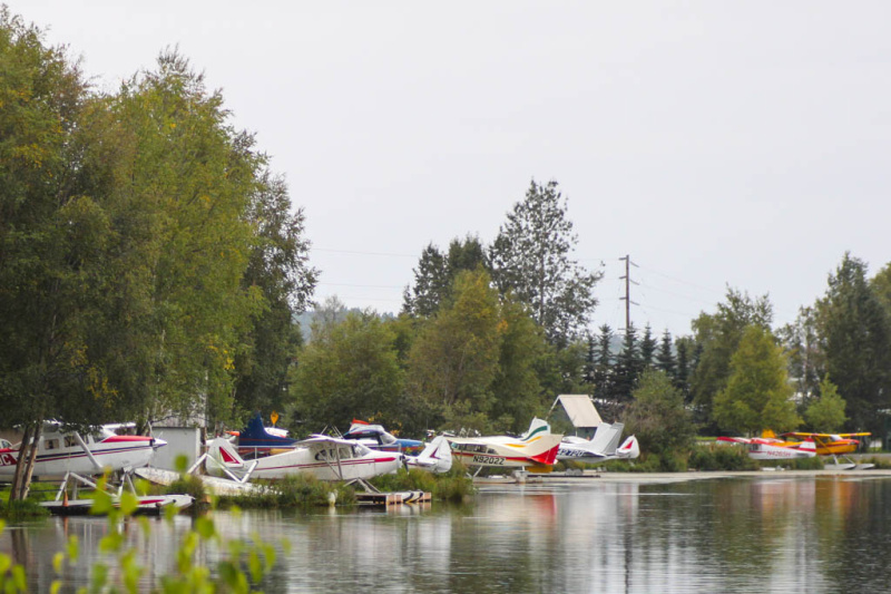 Wasserflugzeuge am Lake Hood