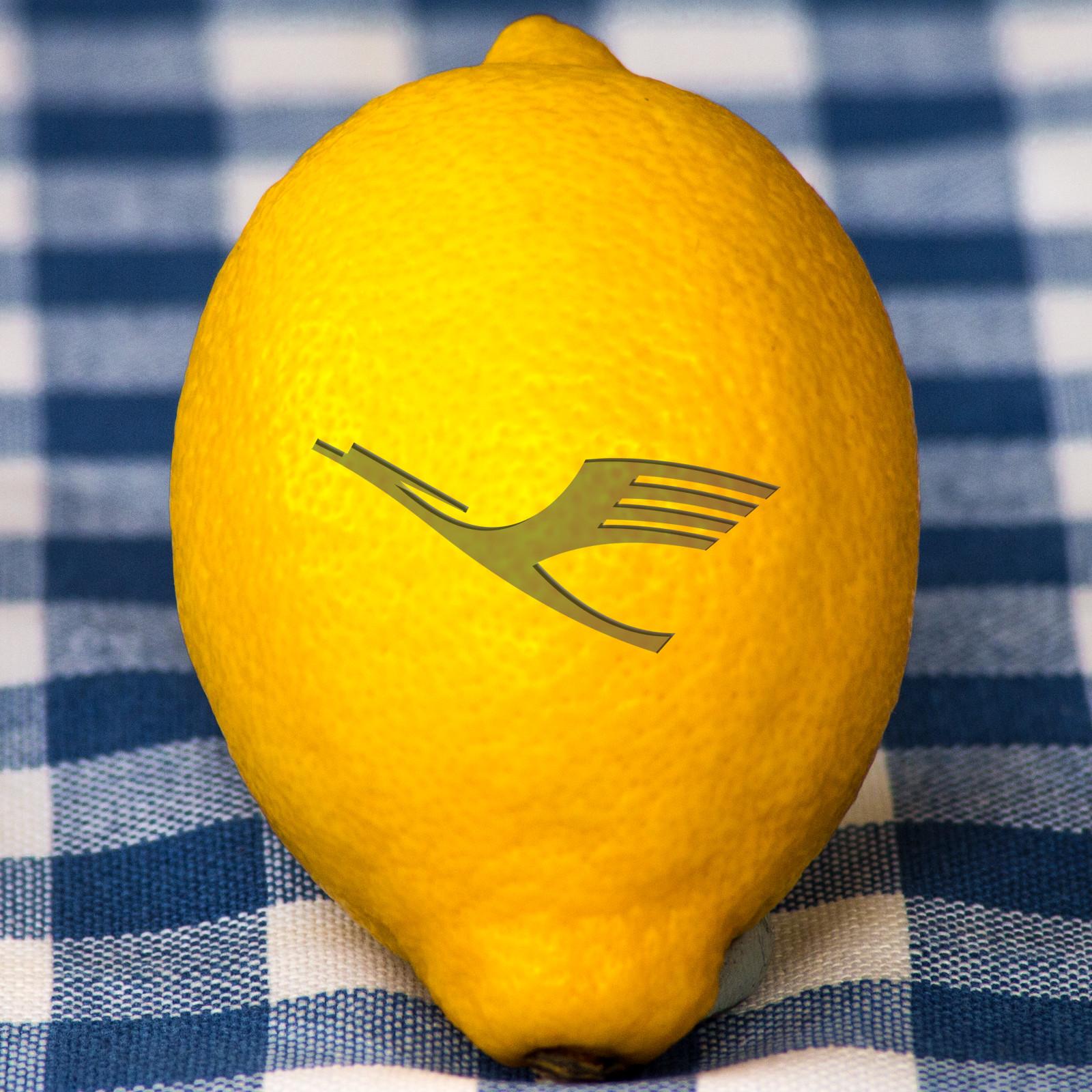 """So sollte eine """"Lufthansa-Zitrone"""" aussehen: Saftig und frisch!"""