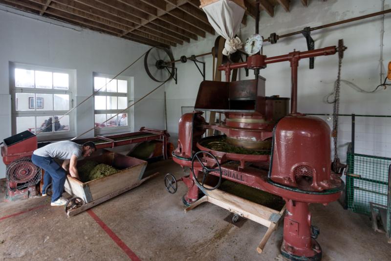 In der Teefabrik