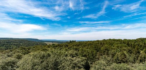 Blick vom Aussichtsturm über den Steigerwald