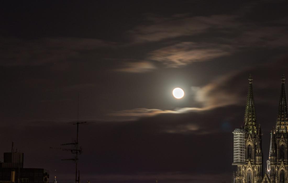 Domblick im Mondschein