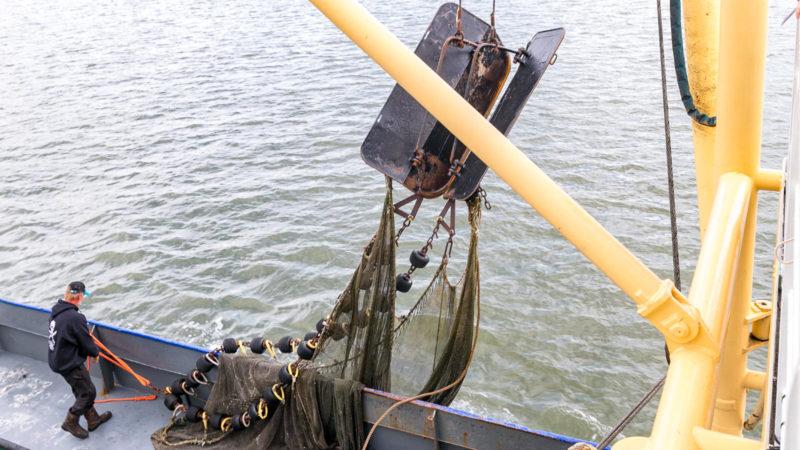 Das Fanggeschirr wird vorbereitet