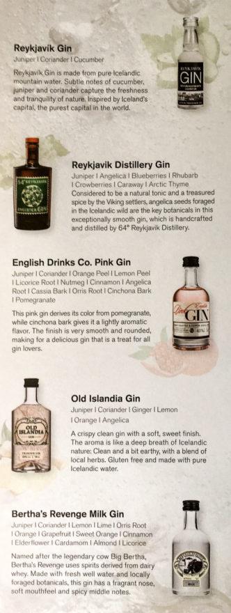"""Teil 1 der """"Gin Library"""" in der Saga Class der Icelandair: Die Isländischen Gins"""